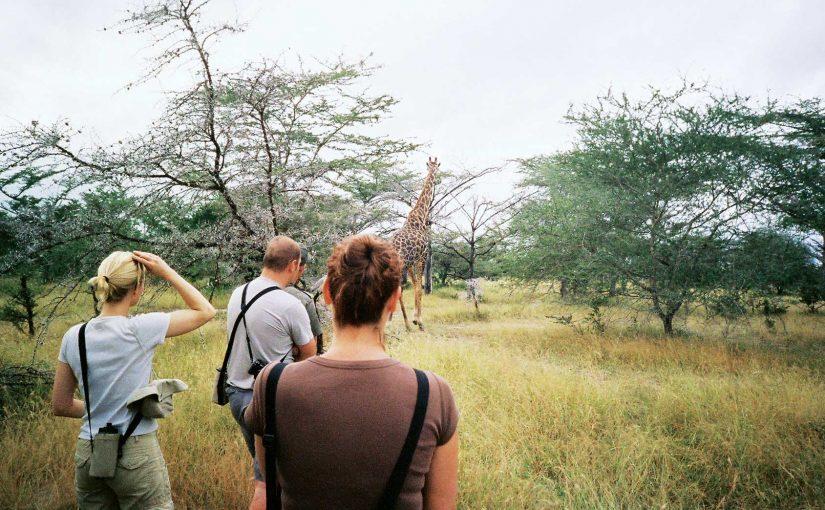 Leisure Gallery – Africa